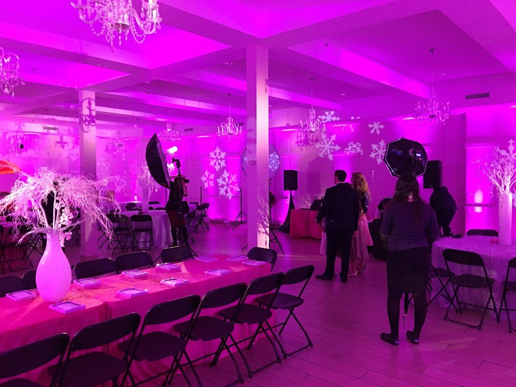 Pink Snowflake on walls & spotlights of Event Planner NY (800) 736-8888